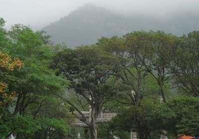 济南最佳的旅游季节